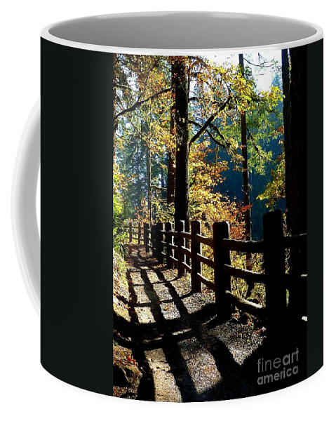 Trail Hike Coffee Mug featuring the photograph Lovely Day For Hike by Susan Garren
