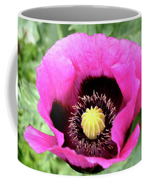 Poppy Coffee Mug featuring the photograph Lovely Springtime by Christiane Schulze Art And Photography