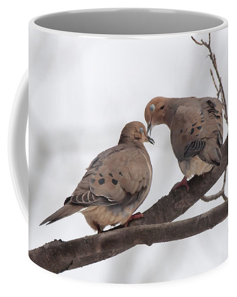 Bird Coffee Mug featuring the photograph Lovey Dovey by Richard Kitchen