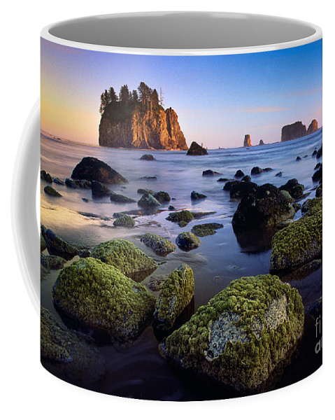 America Coffee Mug featuring the photograph Low Tide At Second Beach by Inge Johnsson