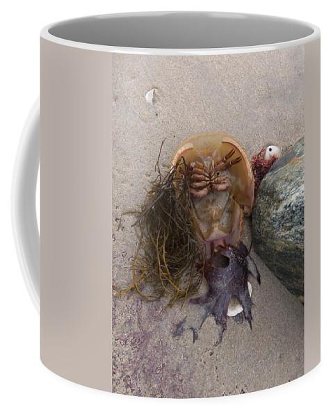 Sandy Pint Coffee Mug featuring the photograph Luck Only Counts In Horseshoes And Hand Grenades by Two Bridges North