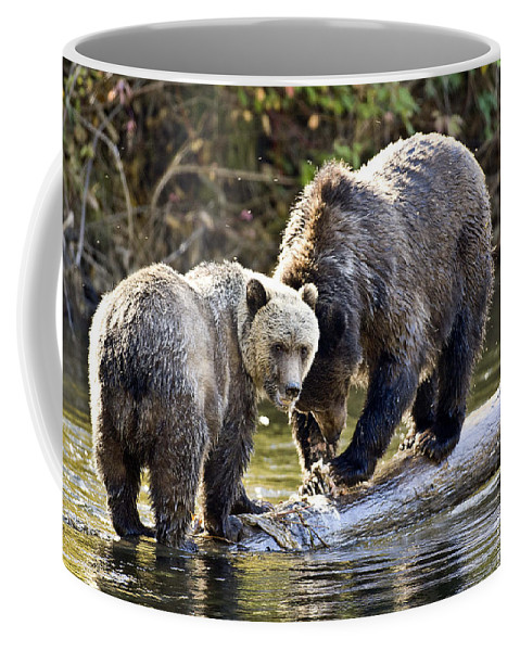Animals # Coffee Mug featuring the photograph Lunch Time by Randy Giesbrecht