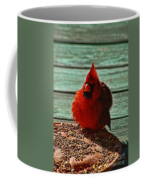 Mississippi Valley Coffee Mug featuring the photograph Lunch Time by Tommy Anderson