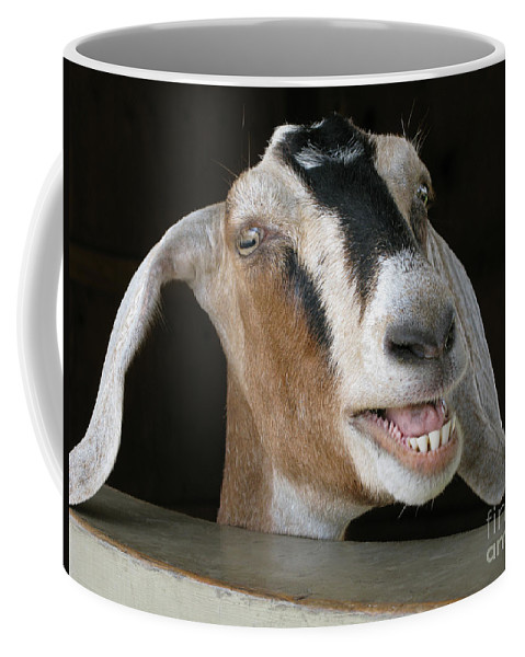Goat Coffee Mug featuring the photograph Maa-aaa by Ann Horn
