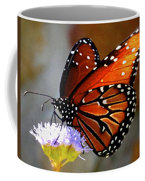 Butterfly Print Coffee Mug featuring the photograph Macro Butterfly by Kristina Deane