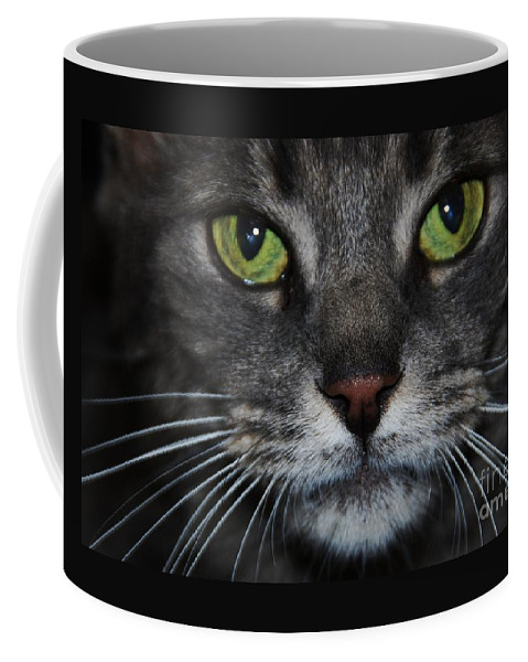 Cat Art Soulful Green Eyes Grey Face Black Pupils Intense Expression Feline Portrait Animal Close Up Metal Frame Suggested Canvas Print Poster Print Available On Greeting Cards For Cat Lovers Tote Bags T Shirts Phone Cases And Mugs Coffee Mug featuring the photograph Madame Butterfly 1 by Marcus Dagan
