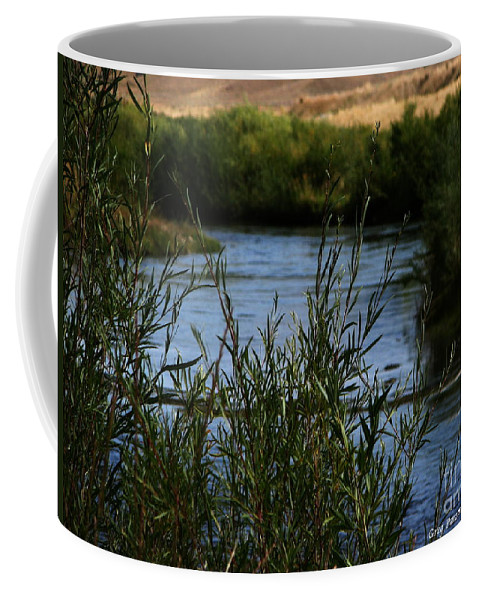 Madison River Coffee Mug featuring the photograph Madison River by Greg Patzer
