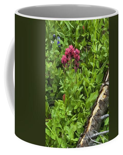 Wildflowers Coffee Mug featuring the photograph Magenta Paintbrush by Sharon Seaward