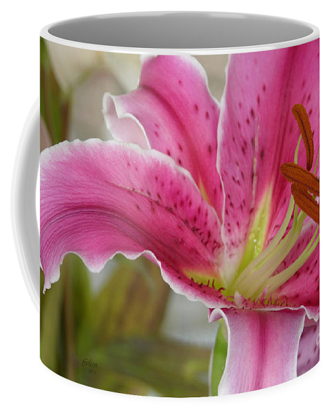 Magenta Tiger Lily Coffee Mug featuring the photograph Magenta Tiger Lily by Julianne Felton