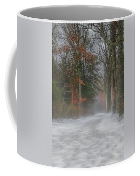 Fog Coffee Mug featuring the photograph Magic In The Fog 3 by Beth Sawickie