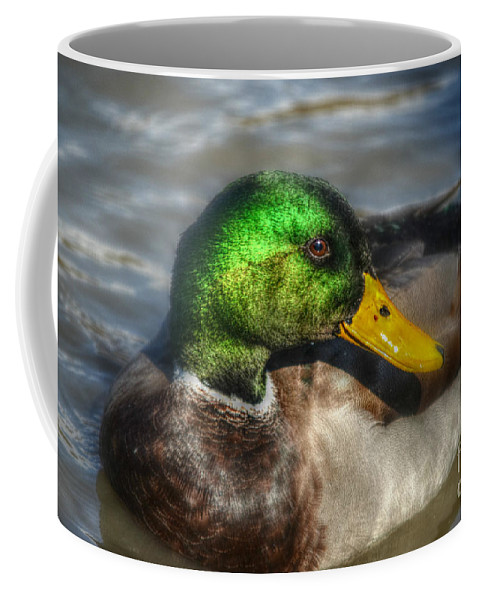 Close Up Coffee Mug featuring the photograph Magnificent Mallard by Peggy Franz