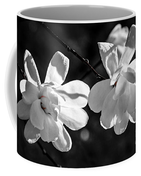 Magnolia Coffee Mug featuring the photograph Magnolia Flowers by Elena Elisseeva