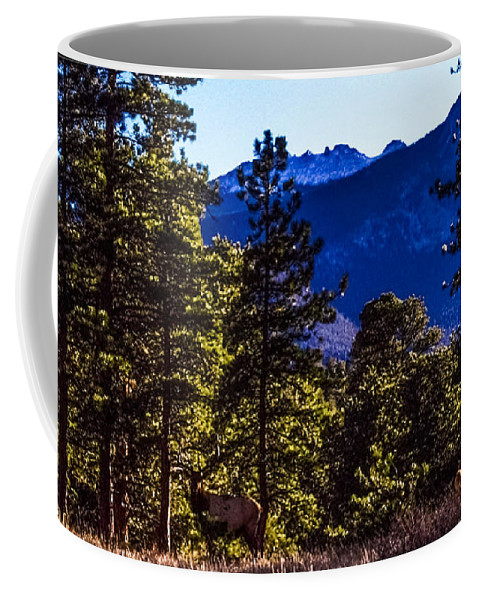 Elk Coffee Mug featuring the photograph Majesty by Jesse Post