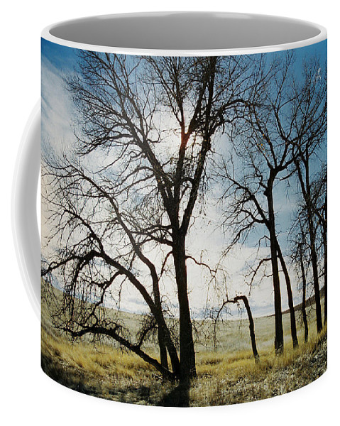 Trees Coffee Mug featuring the photograph Make A Stand by Ric Bascobert