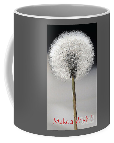 Nature Art Macro Whimsy Flower Dandelion Bruce Fox Graphics Macro Minimal Shot Feng Shui Black Add Whjite Make A Wish Birthday Card Greeting Card Anniversary Card Stock Shot Metal Frame Suggested Canvas Print Suitable Poster Print Available On Duvet Covers Throw Pillows Tote Bags Shower Curtains T Shirts Phone Cases Mugs Coffee Mug featuring the photograph Make A Wish by Marcus Dagan