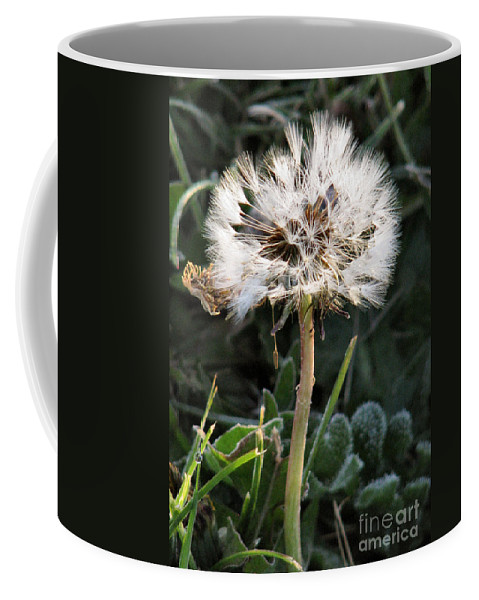 Nature Coffee Mug featuring the photograph Make A Wish by Rory Sagner
