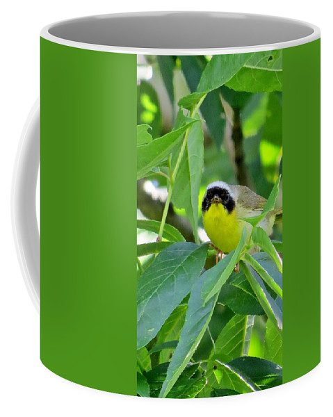 Bird Coffee Mug featuring the photograph Male Warbler by Art Dingo