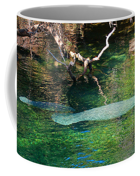 Manatee Coffee Mug featuring the photograph Manatee N Pup by Nancy L Marshall