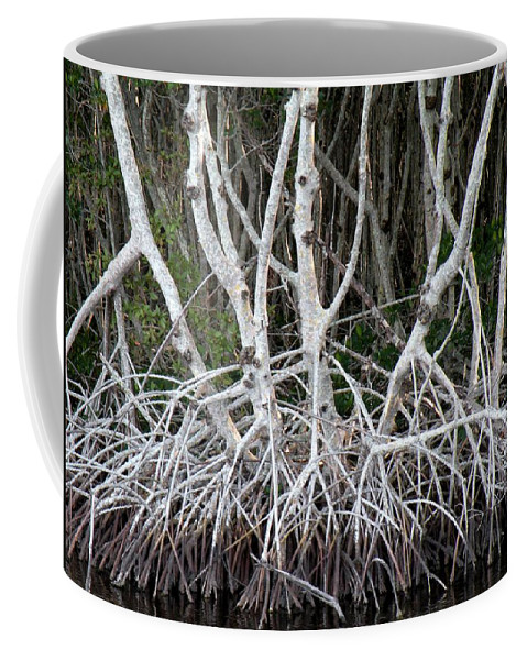 Trees Coffee Mug featuring the photograph Mangrove Roots by Rosalie Scanlon