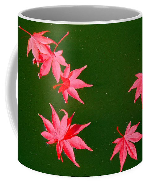 Maple Coffee Mug featuring the photograph Maple Leaves by Kathryn Meyer