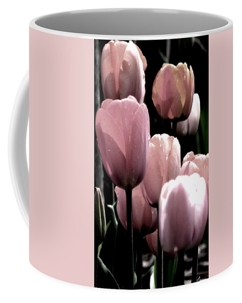 Pink Tulips Coffee Mug featuring the photograph Mauve In The Morning by Angela Davies
