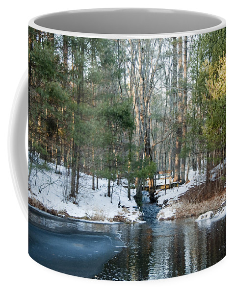 Photography Coffee Mug featuring the photograph Meadow Brook Pond 1 by Steven Natanson
