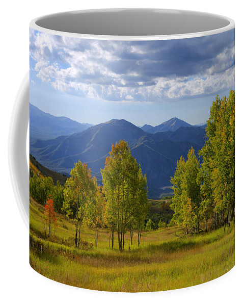 Nature Coffee Mug featuring the photograph Meadow Highlights by Chad Dutson