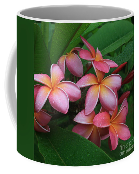 Pink Plumeria Coffee Mug featuring the photograph Melia Hae Hawaii Pink Tropical Plumeria Keanae by Sharon Mau