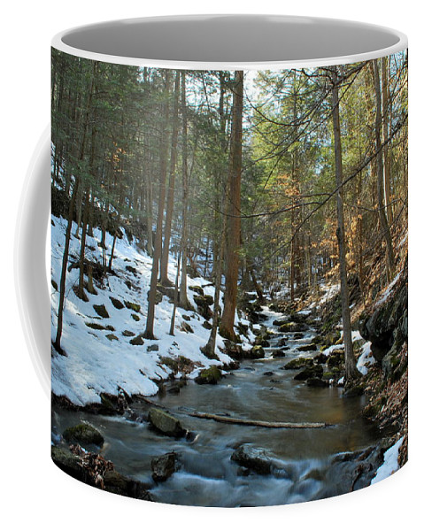 Nature Coffee Mug featuring the photograph Melting Snow by Kurt Von Dietsch