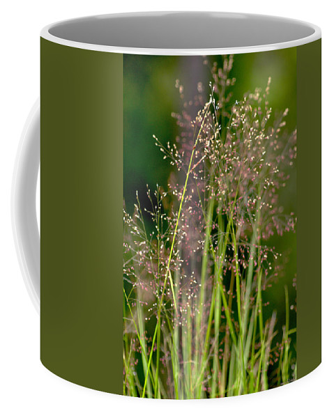Floral Coffee Mug featuring the photograph Memories Of Springtime by Holly Kempe