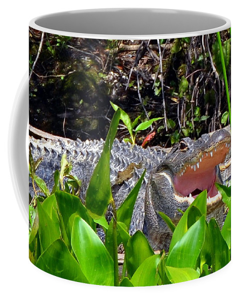 Alligator Coffee Mug featuring the photograph Menacing Mouth by Carla Parris