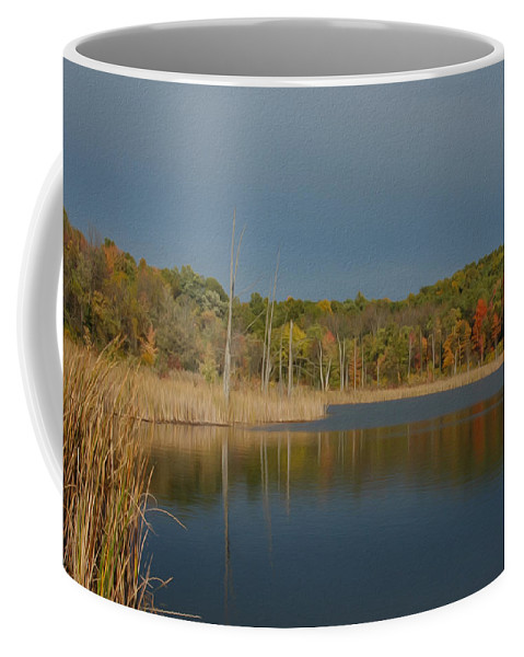 Fall Coffee Mug featuring the photograph Mendon Ponds by Tracy Winter