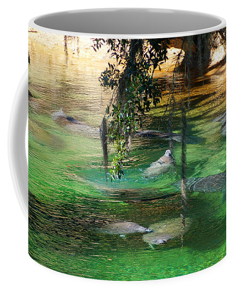 Manatees Coffee Mug featuring the photograph Mermaids In The Sun by Nancy L Marshall