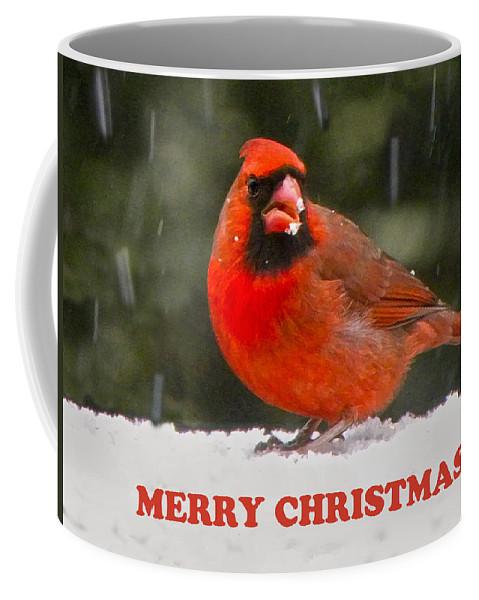 Northern Cardinal Coffee Mug featuring the photograph Merry Christmas Cardinal by Sandi OReilly