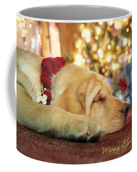 Merry Christmas Coffee Mug featuring the photograph Merry Christmas From Lily by Lori Deiter