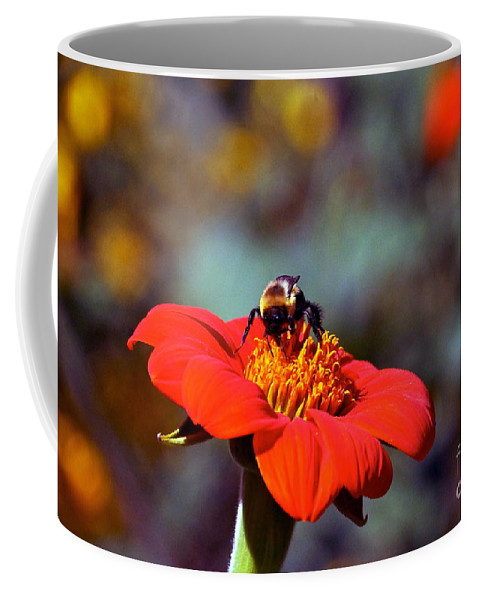 Tithonia Rotundifolia Coffee Mug featuring the photograph Mexican Sunflower Open House Party Time by Byron Varvarigos