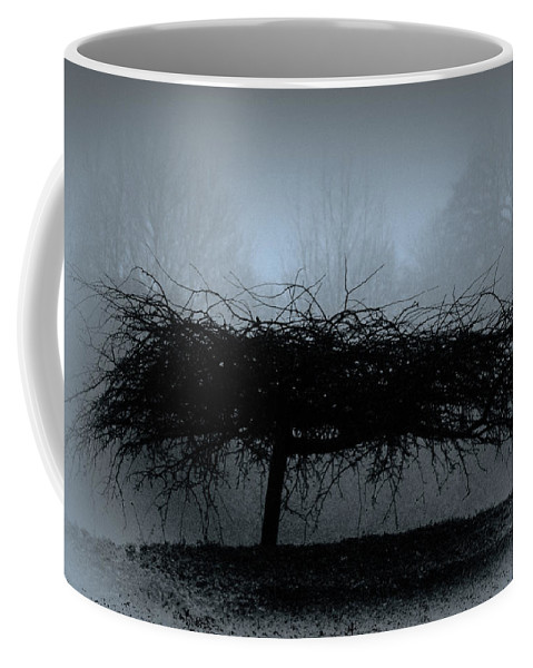 Britain Coffee Mug featuring the photograph Middlethorpe Tree In Fog Blue by Tony Grider
