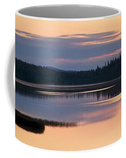 Water Coffee Mug featuring the photograph Midsummer Night's Dream by Heiko Koehrer-Wagner