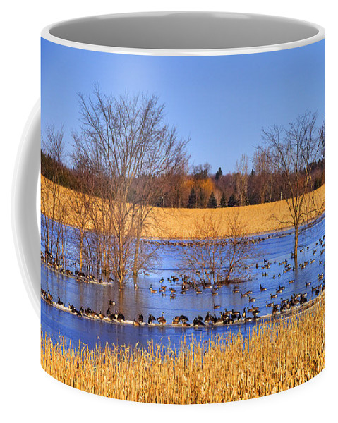 Festblues Coffee Mug featuring the photograph Migration.. by Nina Stavlund