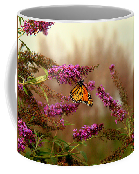 Fine Art Coffee Mug featuring the photograph Migration by Rodney Lee Williams