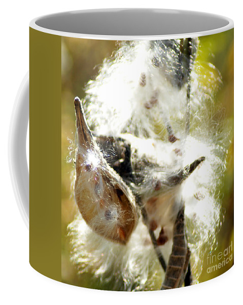 Common Milkweed Plant Coffee Mug featuring the photograph Milkweed Blowout by Optical Playground By MP Ray