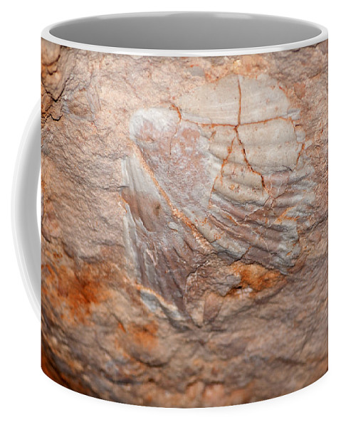 Rock Coffee Mug featuring the photograph million years ago 2 - An enormeous shell fossile in top of cova des coloms in Es Migjorn - Menorca by Pedro Cardona Llambias