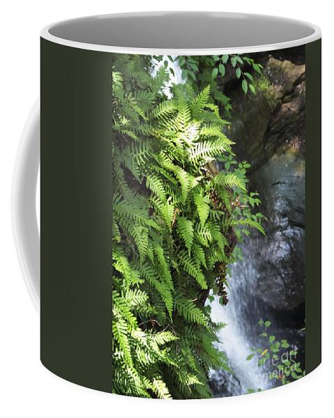 Waterfall Coffee Mug featuring the photograph Mine Kill Falls New York by Lizi Beard-Ward