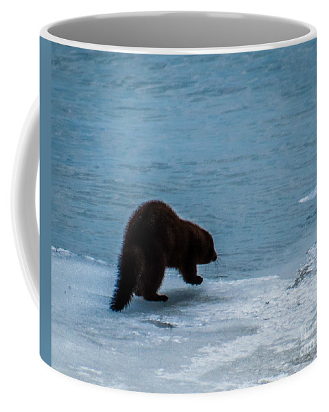 Mink Coffee Mug featuring the photograph Mink by Ronald Grogan