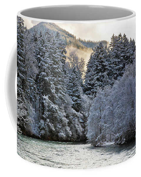Winter Coffee Mug featuring the photograph Mist And Snow On Trees by Belinda Greb