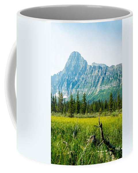 Alberta Coffee Mug featuring the photograph Mistaya River Valley And Mountain Range by Douglas Barnett