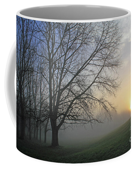 British English Countryside Landscape Coffee Mug featuring the photograph Misty Dawn by Julia Gavin