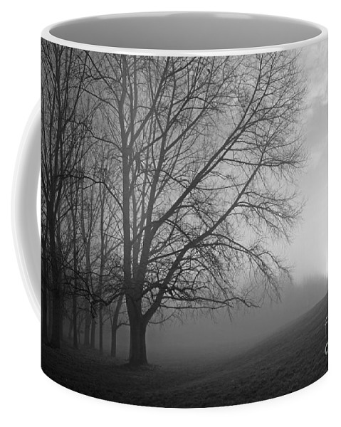British Landscape Coffee Mug featuring the photograph Misty Morning by Julia Gavin