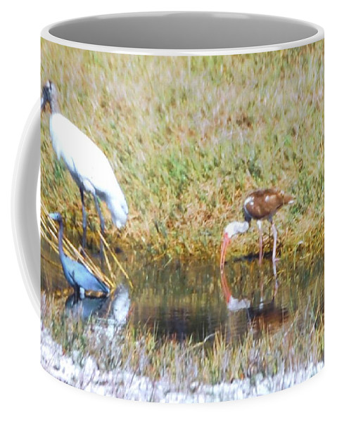 North Ft.myers Coffee Mug featuring the photograph Mixed Group Of Shore Birds by Robert Floyd