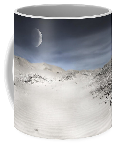 Evie Coffee Mug featuring the photograph Mojave In Pale by Evie Carrier